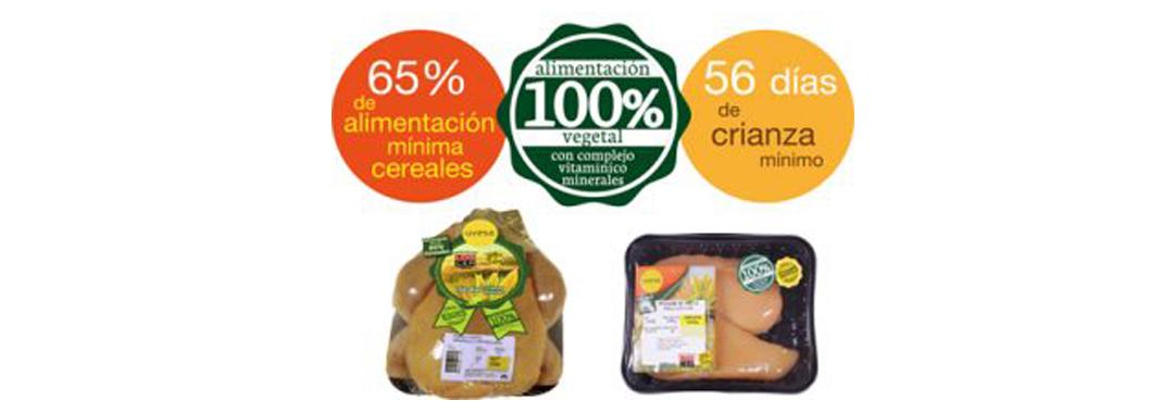 Production of certified yellow chicken Uvesa (Prado Vega)
