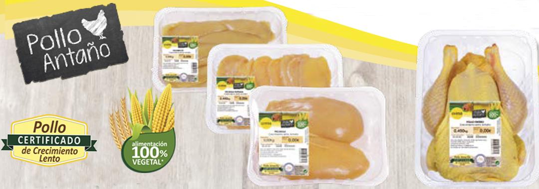 "UVESA LAUNCHES ITS NEW RANGE "" Pollo Antaño"" (Certified chicken 100% vegetal)"