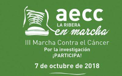 Group Uvesa sponsors the 3rd March against the Cancér de Tudela