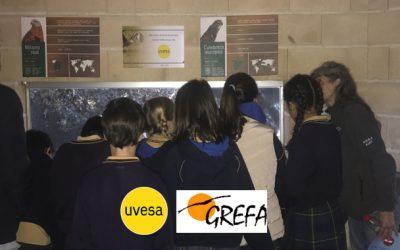 Uvesa colabora con el grupo de Rehabilitación de la fauna autóctona y su habitat (Grefa)