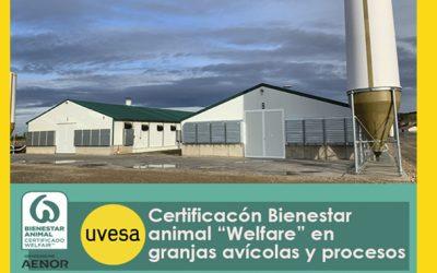 Grupo Uvesa certifica sus granjas avícolas de crianza y procesos con el sello de 'Bienestar Animal Welfare'