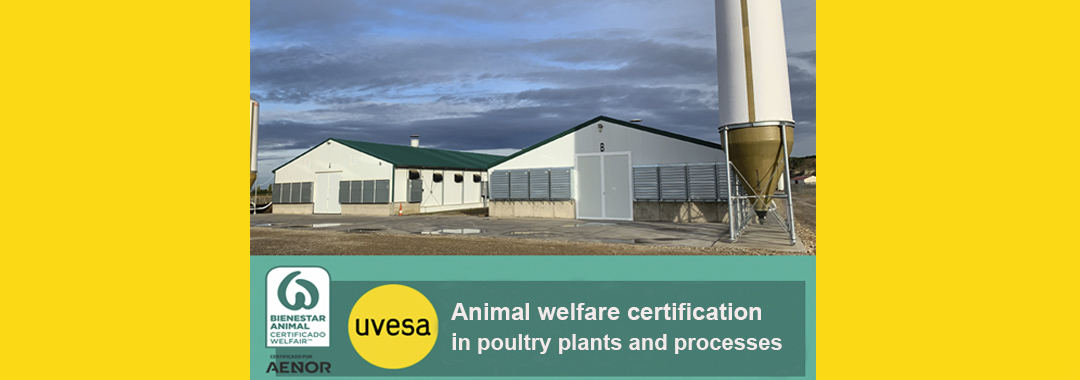 Uvesa Group certifies its poultry farms with the seal of 'Welfare Animal Welfare'
