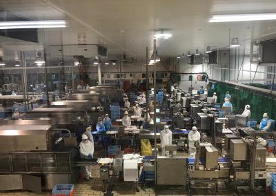 Planta procesadora Uvesa Tudela