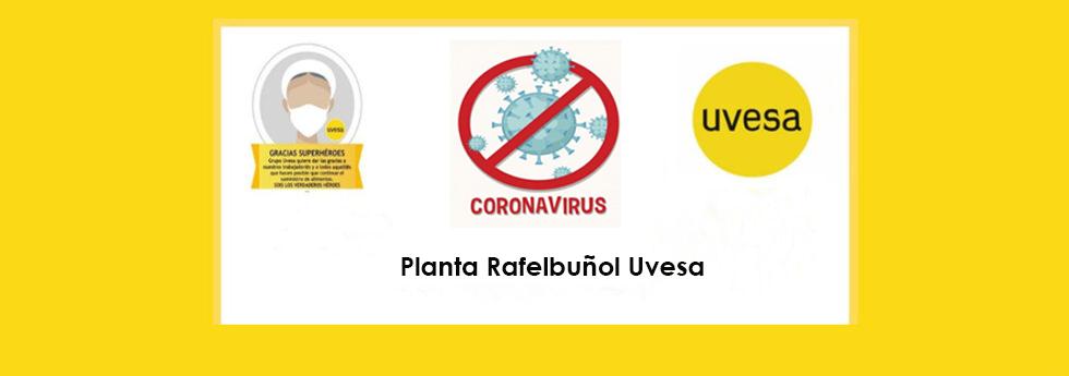 Tercer día de pruebas PCR en planta de Rafelbuñol Uvesa