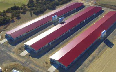 GROUPE UVESA étend son réseau d'exploitations intégrées avec trois nouveaux navires d'élevage de puolet à Albaracín (Teruel)