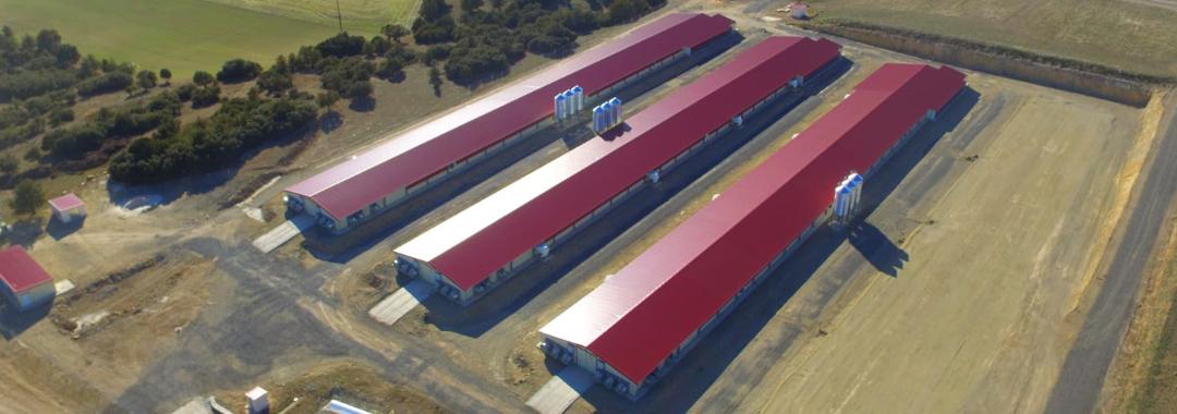 Grupo Uvesa amplia su red de granjas integradas con tres nuevas naves de cría de pollos en Albarracín (Teruel)