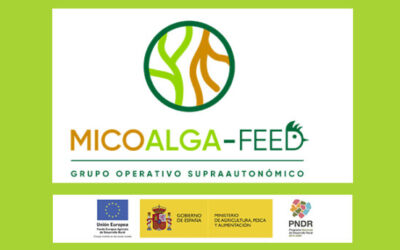 Grupo Uvesa participe à un projet de développement de nouveaux aliments pour animaux basés sur l'utilisation de champignons et d'algues